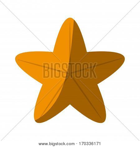 sea star icon over white background. colorful design. vector illustration