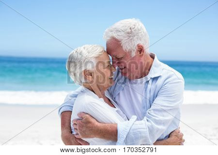 Senior couple embracing head to head at the beach