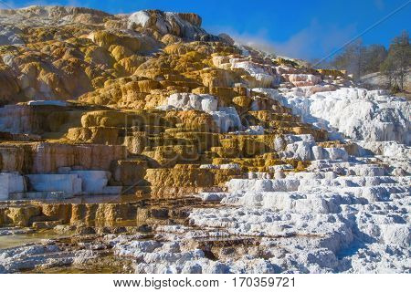 Mammoth hot springs in the Yellowstone National Park, Wyoming, USA