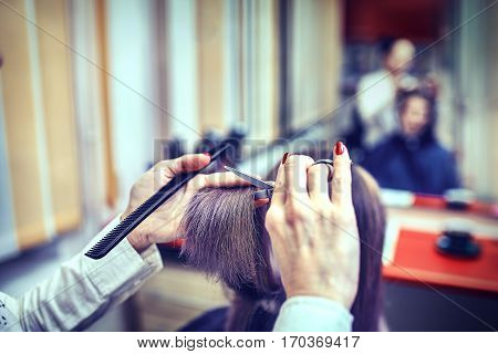 Hairdresser trimming brown hair with scissors ,hairstyle