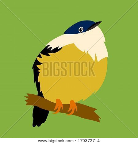 manakin vector illustration style Flat side front