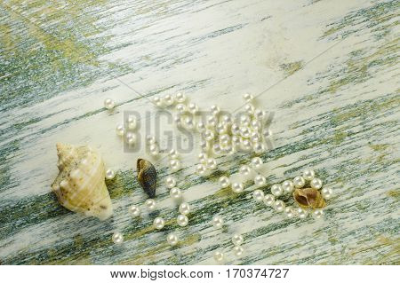 Scattered Pearl Beads And Shells.