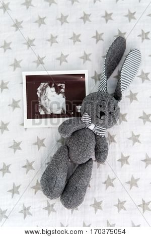 soft toy rabbit lying on a blanket with stars next to the picture of the ultrasound
