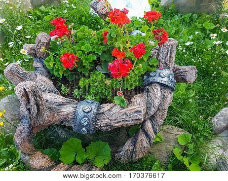 Beautiful landscaping with flowers. Beauty of nature.