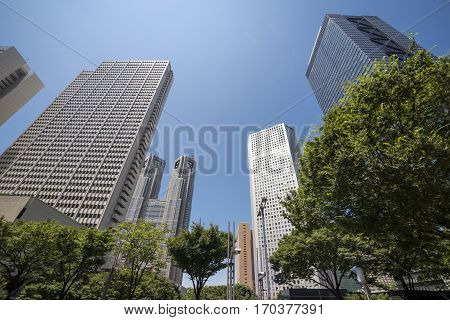 Skyscrapers and roadside green trees in Shinjuku under blue sky