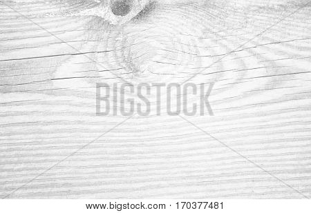Wooden texture close up. White wooden background. Monochrome wood. Timber textured board. Grey stripes plank pattern. Curves on rough old tree. Natural timber texture.