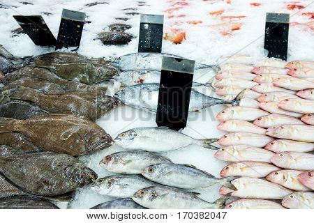 Fresh fish on ice with price tag, Bangkok Market Thailand.