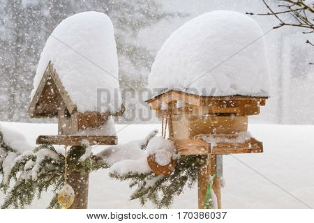 Thick snow falling on roof of wooden bird feeder decorated with pine tree branches with a coconut shell suet treats hanging, winter in Europe