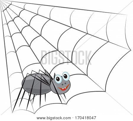 funny smiling spider sits on a spider web