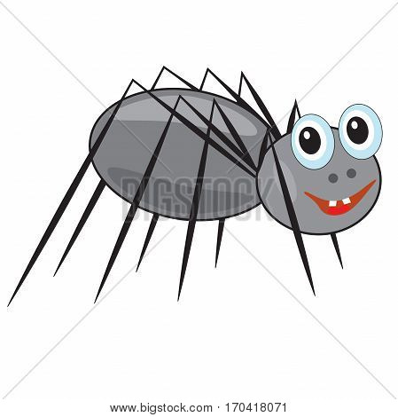 funny smiling spider on a white background