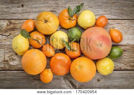 citrus fruit collection (orange, lemon, lime, grapefruit, tangerine, mandarin, kumquat) on weathered rustic wood, top view