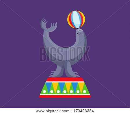 Circus concept - sea calf shows skills in gymnastics, stunts, number with the ball, entertains the audience by creating holiday atmosphere, good mood. Vector illustration isolated on dark background.