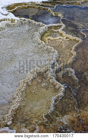Detail Of Geothermal Features In Mammoth Hot Springs, Yellowstone National Park