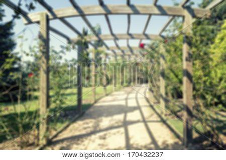A Beautiful Wooden Pergola Inside The Arboretum (defocused)