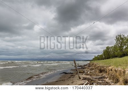 Sand Dune Erosion Caused By Lake Huron Wave Action