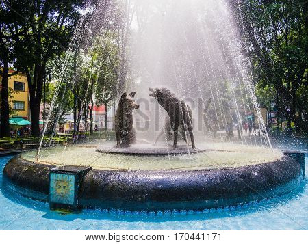 Fountain of drinking coyotes, Coyoacán, Mexico City