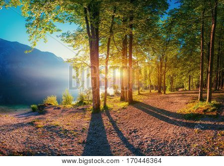 Sunset breaks between the trees. The trail in the mountains that goes near the water. Mountain Lake between mountains. Europe