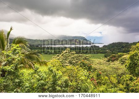 Ocean and vegetation in Hanalei Bay in Kauai, Hawaii