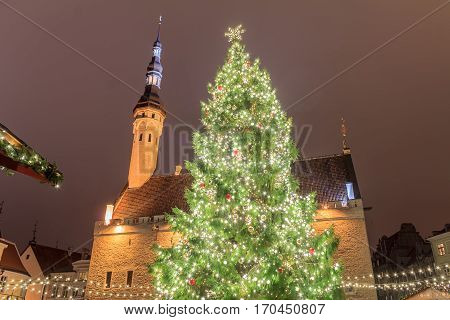 Town Hall Square, Tallinn, Estonia The first Christmas tree at Tallinn Town Hall Square was erected in 1441. It was the first Christmas Tree ever put on display in Europe. Night, evening photo from the bottom