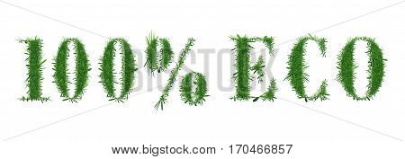 Ecology nature design. The text 100 ECO is made of grass. Environmental concepts for healthy lifestyle, natural foods. Suitable for ads, banners, cards. Vector illustration. Horizontal location.