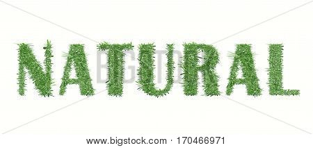 Ecology nature design. The text Natural is made of grass. Environmental concepts for healthy lifestyle, natural foods. Suitable for ads, banners, cards. Vector illustration. Horizontal location.
