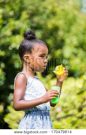 Little girl making bubble with bubble wand