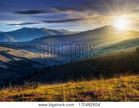 day and night time change of landscape with purple savory flowers among the grass on the hillside in mountains