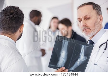 Focus on face of serene bearded doctor looking at x-ray of patient in apartment of clinic