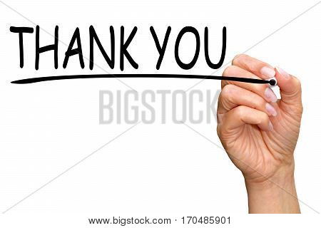 Thank you - female hand writing text on white background