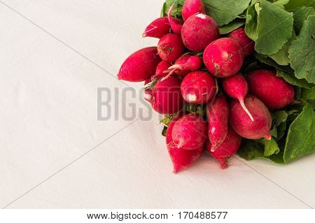 Close Up Of Fresh Turnips On A White Background