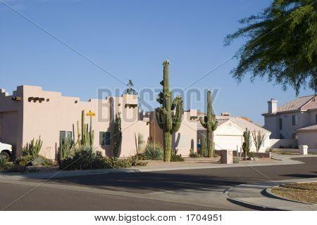Arizona Cul-De-Sac