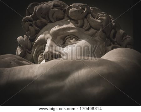 Statue of Michelangelo's David detail face and eyes