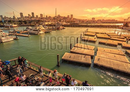 San Francisco, California, United States - August 14, 2016: scenic aerial view at sunset of Pier 39, Fisherman's Wharf. Tourists watching yachts and Sea Lions colony. San Francisco skyline background.