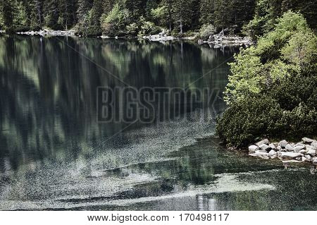 Glacial lakes and forest in the Tatra Mountains in Poland