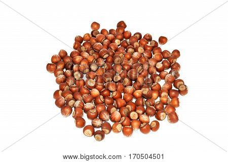 Pictures of dried hazelnuts with and without shells