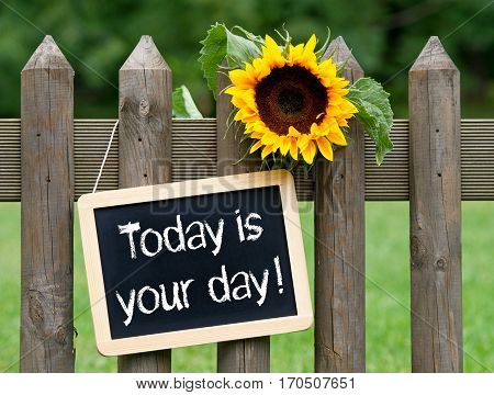 Today is your day - chalkboard with sunflower in the garden