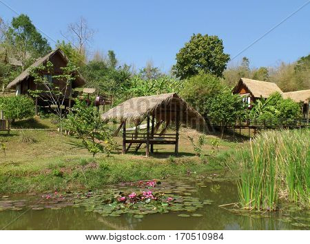 Traditional Thai Thatched Roof House and Pavilion around the Lotus Pond, Countryside of Thailand