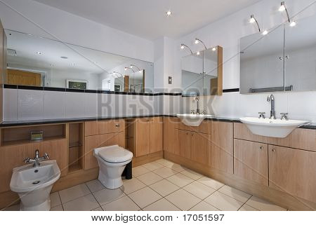 superb luxury bathroom with double hand wash basin and bidet