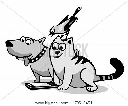 Bird cat and dog looking at the phone. Black and gray flat vector illustration isolated on white background