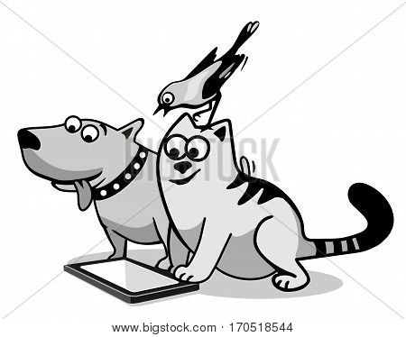 Bird cat and dog looking at the tablet computer with blank screen. Black and gray flat vector illustration isolated on white background