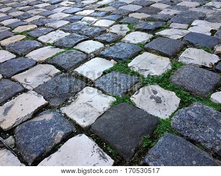 Black and white checkered cobblestone ground with green weeds growing in between. With space for text.
