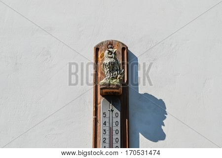 Wall Thermometer. A Device For Measuring The Ambient Air Temperature. Ornament Of The Owl, Decoratio