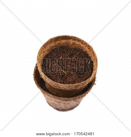Degradable coconut pot filled with the earth soil, composition isolated over the white background