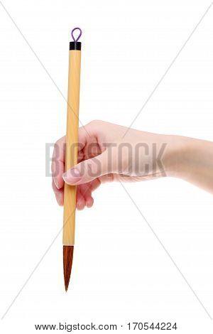 Hand holding traditional writing brush on white background