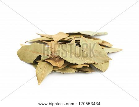 Pile of dried bay leaves isolated over the white background
