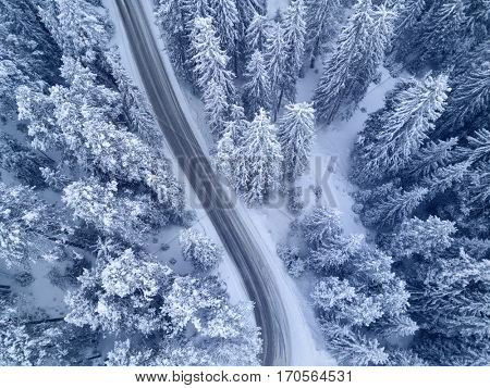 Winter snow covered pine forests and road bird's eye view
