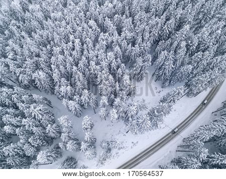 White snowy road with a car in the forest bird's eye view