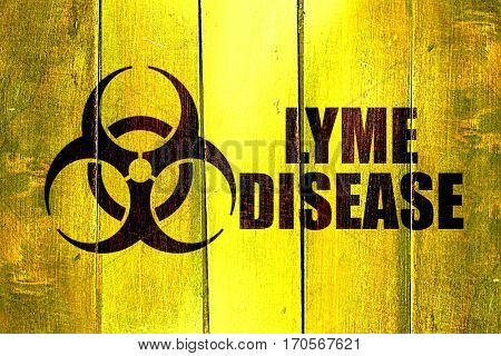 Vintage Lyme disease on a grunge wooden panel