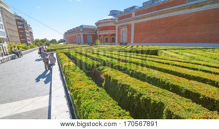 Madrid, Spain, November 9th, 2013,  Tourism in Spain.  Man takes a smoke break beside the labyrinth of diagonal rows of shrubbery behind Prado Museum in Madrid Spain.