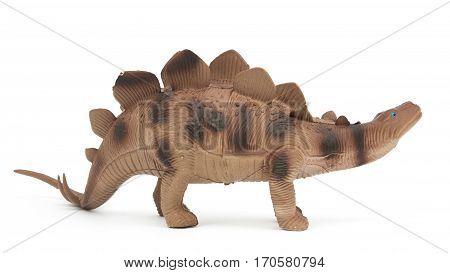 Beautiful stegosaurus dinosaur isolated on white background